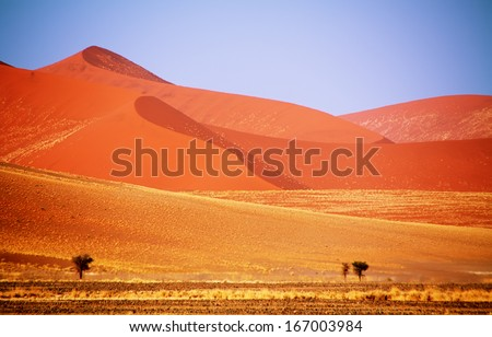Dead valley in sossusvlei, Namibia - stock photo