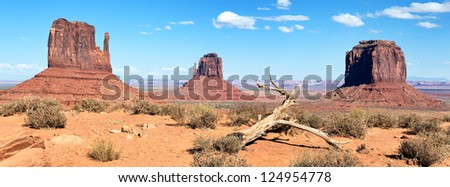 dead wood at Monument Valley, USA, panoramic view - stock photo