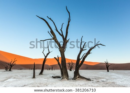Deadvlei landscape with dead trees and sand dunes in Namibia - stock photo