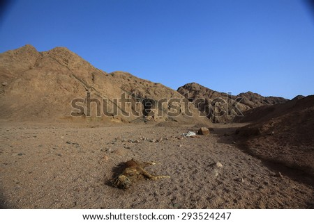 death desert drought stones