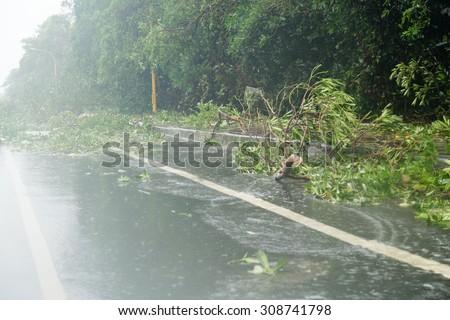 Debri blocking road during a typhoon - stock photo