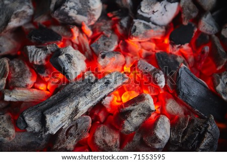 Decaying coals for cooking and a background - stock photo
