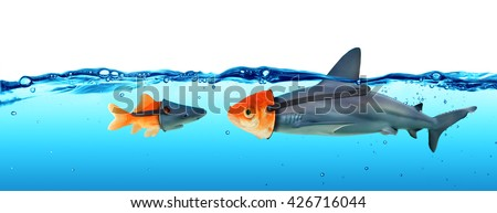 Deception Concept - Disguise Between Shark And Goldfish  - stock photo