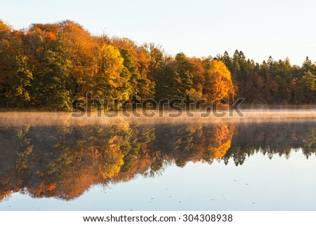 Deciduous forest in autumn colors with fog on the lake - stock photo