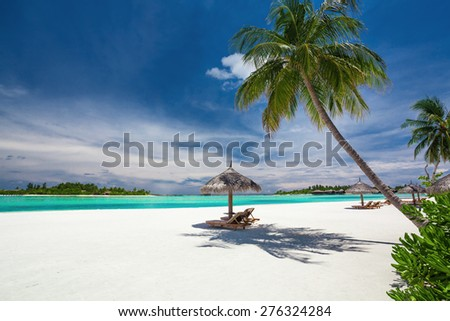 Deck chairs under palm trees on an empty tropical beach of Maldives - stock photo