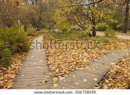 decking-pathways with autumn leaves