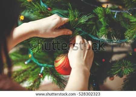 Decorate the Christmas tree. Woman's hand hangs a beautiful toy red ball on green coniferous branch close-up