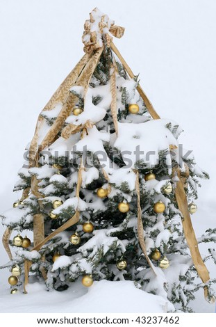 decorated christmas tree outdoors - stock photo