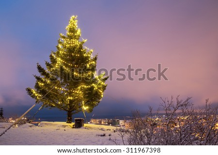 Decorated christmas tree outside overlooking Hafnarfjordur in Iceland - stock photo