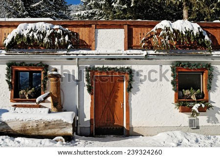 decorated windows and door in the textured wall of a small house in the forest - stock photo