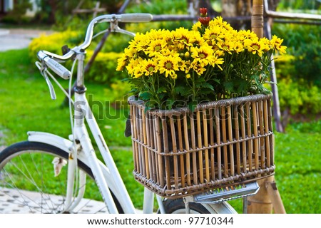 Decorated yellow flowers in a basket on a bicycle - stock photo
