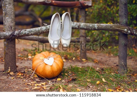 Decorating a wedding with autumn pumpkin in yellow on the background of beautiful autumn forest. Series of photos in my portfolio. - stock photo