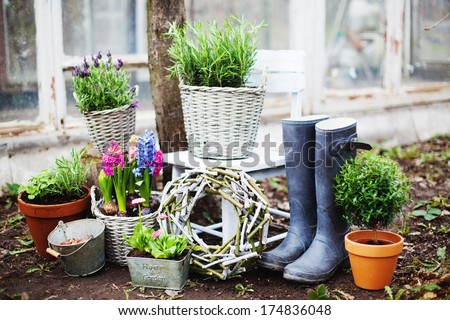 Decorating spring garden with  flower arrangements