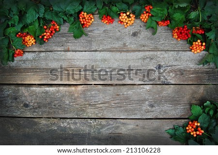 Decoration autumn frame. Berries on wooden background. Greeting card design - stock photo