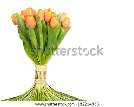 Decoration bouquet of fresh beautiful tulips, right you can write some text
