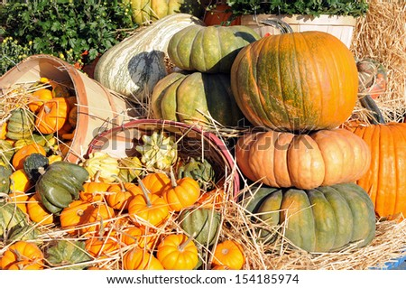 Decoration for harvest season at outdoor market place