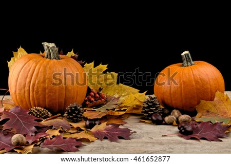 Decoration of pumpkins for thanksgiving day with autumn leaves on black background