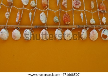 decoration with shellfish, beach style decoration