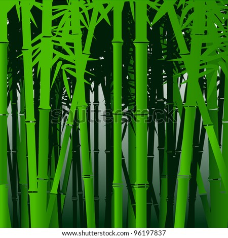 Decorative bamboo - stock photo