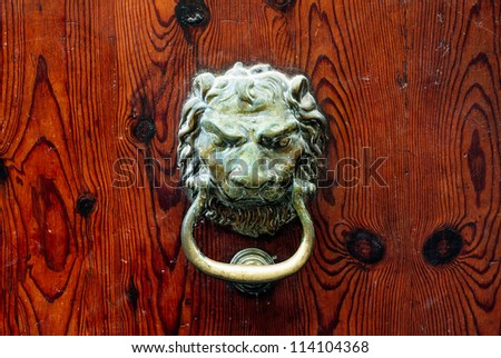 Decorative bronze lion head door knob - stock photo