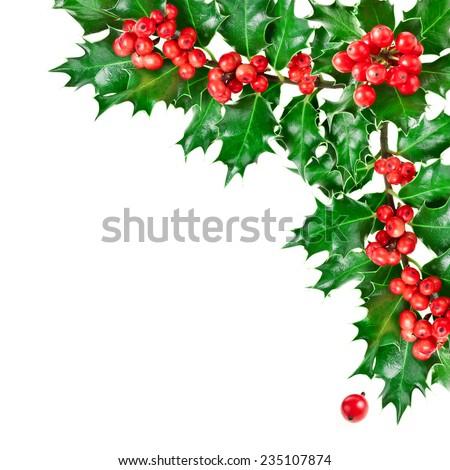 Decorative corner border with Christmas holly plant  isolated on white background - stock photo
