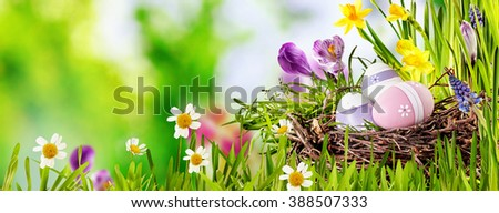 Decorative Easter Egg panorama banner with three decorated eggs in a birds nest in fresh green spring grass with colorful flowers over an outdoor blurred background with copy space