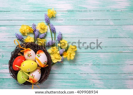 Decorative Easter eggs in nest and bright spring flowers on turquoise wooden background. Easter background for design. Selective focus. Place for text. - stock photo