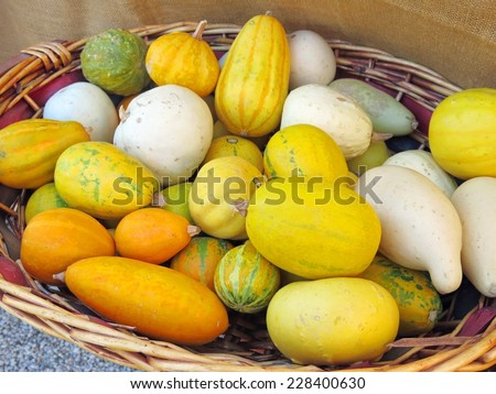 decorative gourds for halloween party - stock photo
