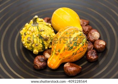 decorative gourds in a dark dish - stock photo
