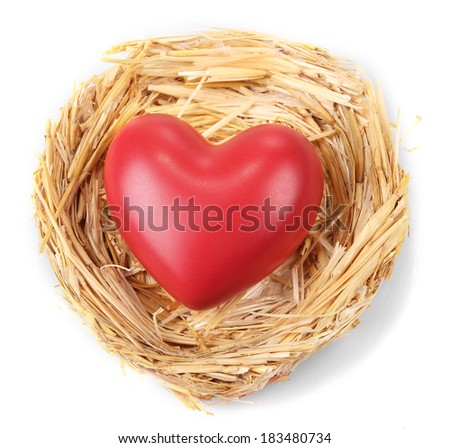 Decorative heart in nest, isolated on white - stock photo