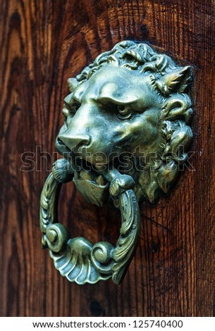 Decorative lion head bronze door knob - stock photo