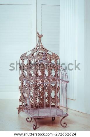Decorative metal birdcage in interior - stock photo