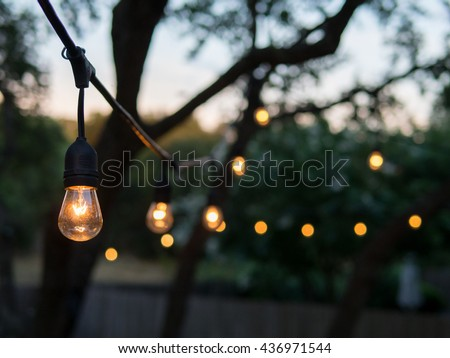 Outdoor stock images royalty free images vectors for How to hang string lights on trees