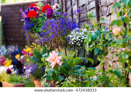Decorative plants and flowers in hanging baskets on a wooden shed or wall.
