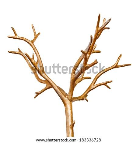 Decorative polished dry tree top - stock photo