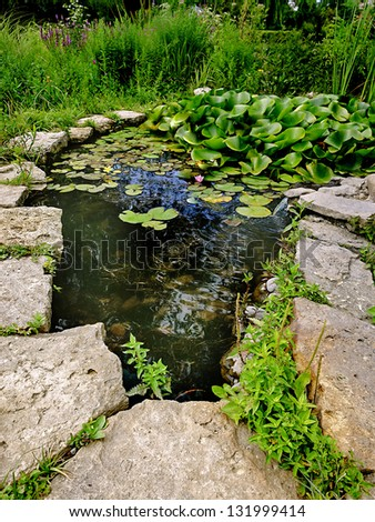 Decorative Pond In Sunshines Stock Photo