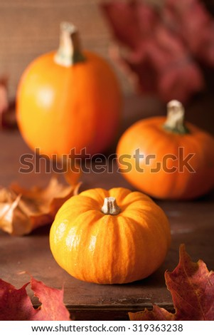 decorative pumpkins and autumn leaves for halloween - stock photo