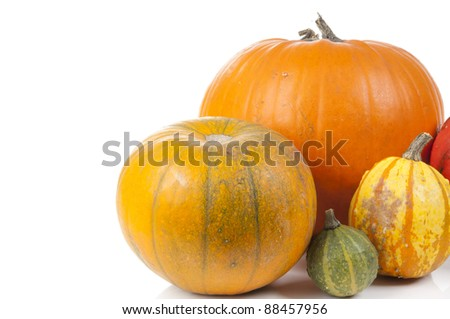 decorative pumpkins isolated on a white background - stock photo