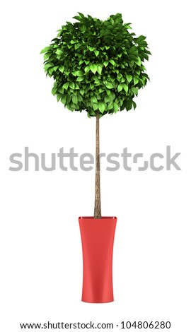 decorative round tree in red pot isolated on white background - stock photo