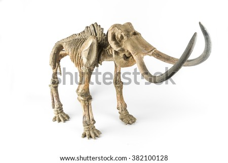 Decorative skeleton of a mammoth on the white background