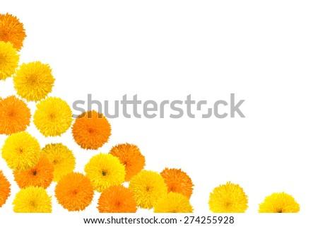 Decorative sunflower frame isolated on white background - stock photo