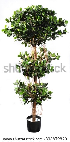 decorative tree