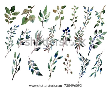 Decorative watercolor leaves clipart design elements em ilustrao decorative watercolor leaves clipart design elements can be used for wedding baby shower junglespirit