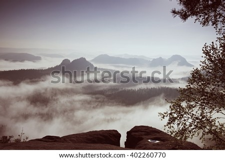 Deep misty valley within daybreak. Foggy and misty morning on the sandstone view point in national park Saxony Switzerland in Germany. - stock photo