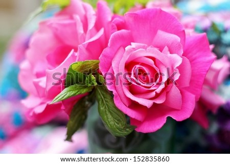 Deep Pink summer blown  roses with green mint leaves,  with abstract crochet colored background, a shabby chic, or vintage feel, shallow depth of field - stock photo