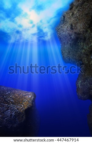 Deep sea zone/rise in blue ocean/under water /ocean water /under deep blue sea  - stock photo