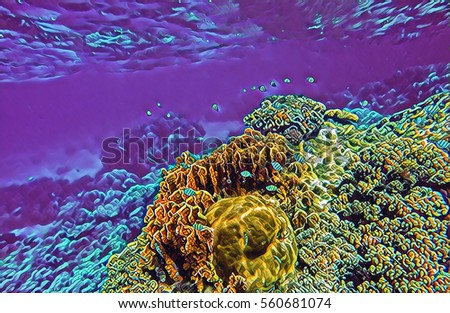 nature coral underwater landscape - photo #36