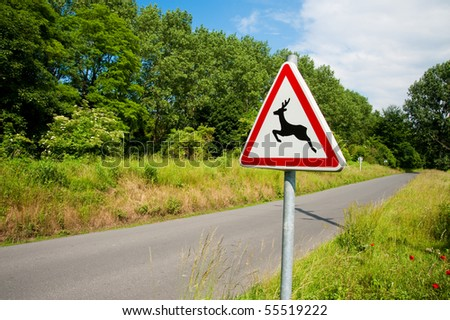 Deer crossing sign and road