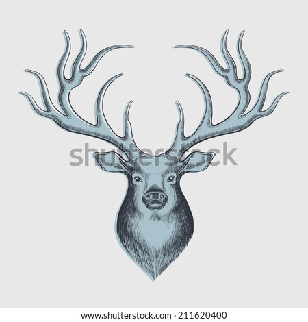 deer drawing - perfect for christmas designs - hand drawn with graphics tablet - stock photo