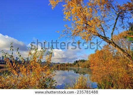 Deer Lake view through autumn trees, Burnaby, British Columbia, Canada - stock photo